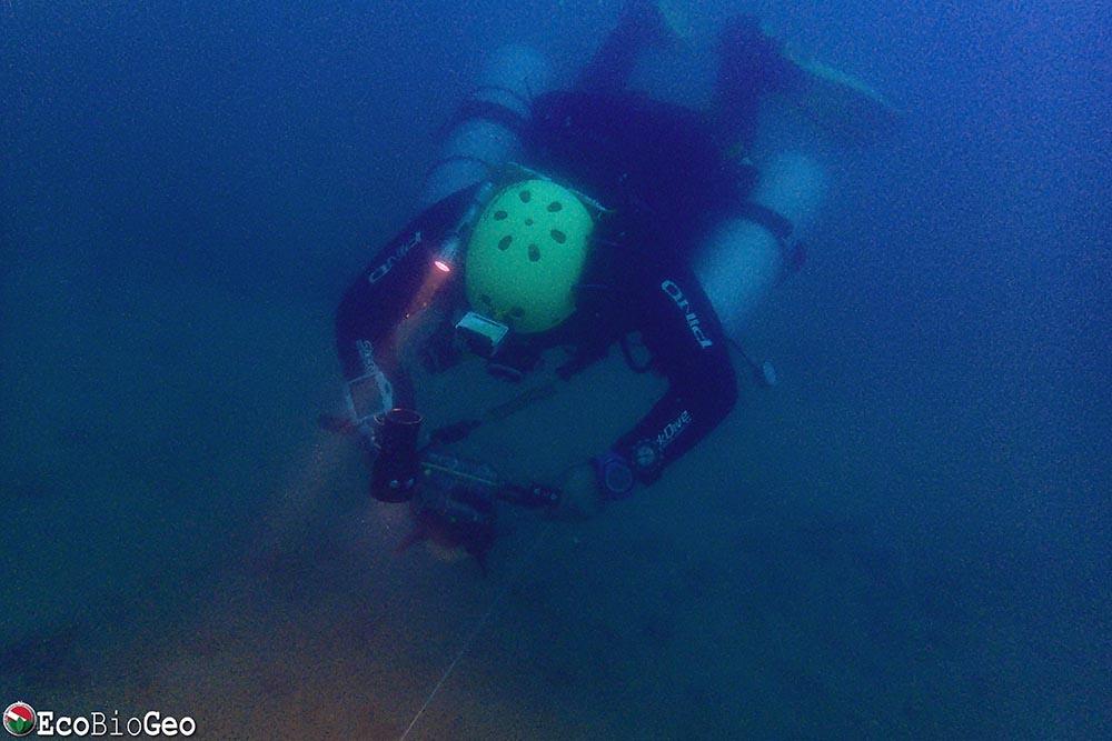 Monitoramento da biota aquática no Emissário Submarino de Jaguaribe