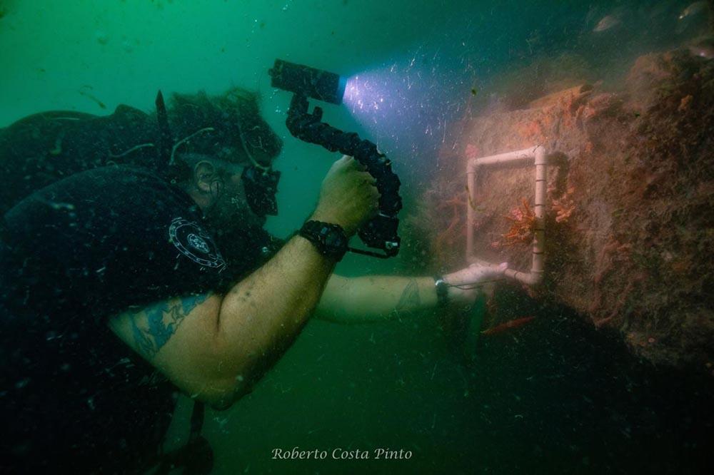 Coleta, análise e teste de resistência do Coral-sol na Marina Itaparica